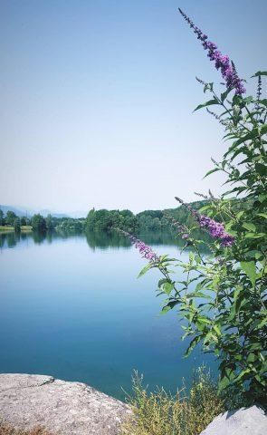 Aire-de-pique-nique-Montrejeau-lac