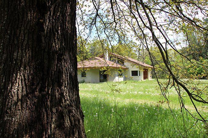 Arboretum-1-CARDEILHAC