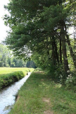 Arboretum-6-CARDEILHAC