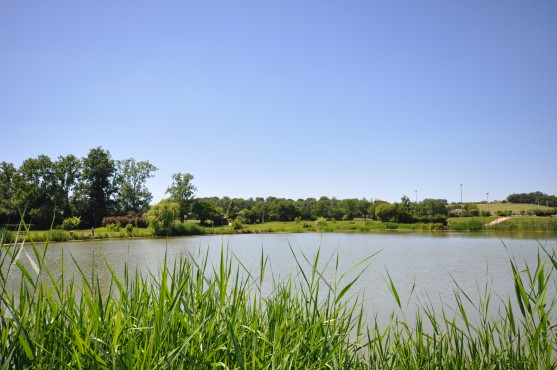 Lac-L-Isle-en-dodon