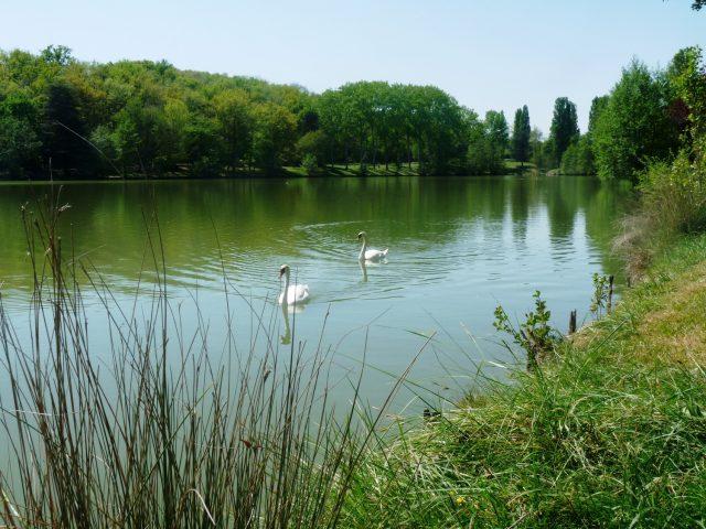 Lac-de-Boulogne–Mairie-BOULOGNE