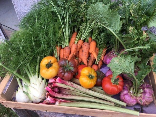 Les-jardins-de-la-tuilerie-Terrebasse-panier-legumes