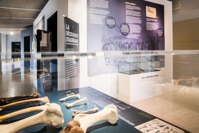 Musee-Aurignacien–A.-Ferreira