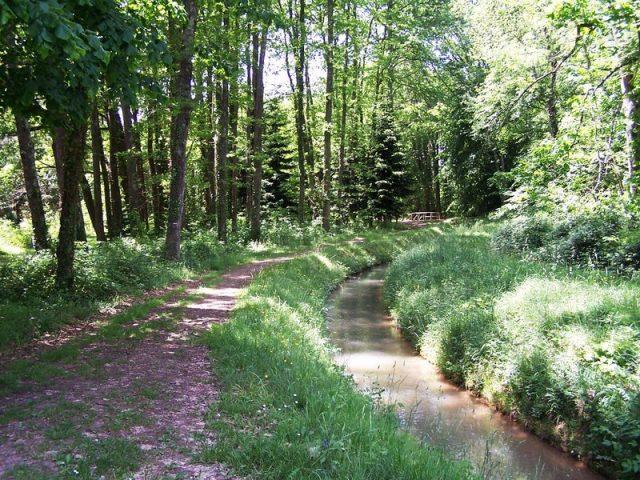 sentier-de-l-arboretum–cardeilhac–chef-canton-ref–balade–randonnee-pedestre–comminges–pyrenees–haute-garonne